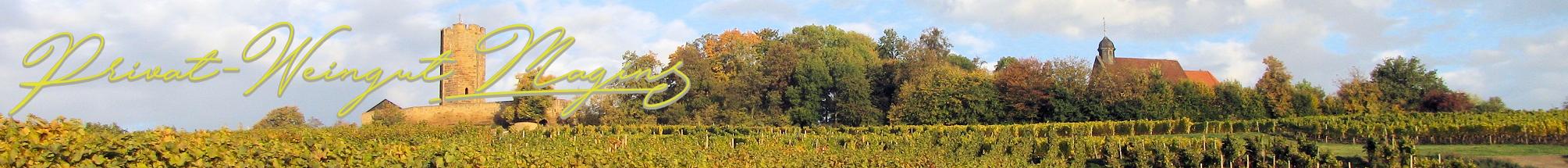 Privat-Weingut Magin